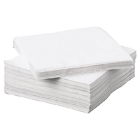Napkin 2Ply 330x330mm White P100 0502135