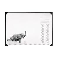 Durable Wildlife Desk Mat 590 x 420mm