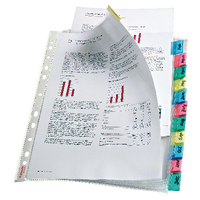 Esselte Index Pocket A4 12-Tab Assorted