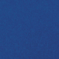 GBC A4 Ry/Blue Binding Covers 250gm P100