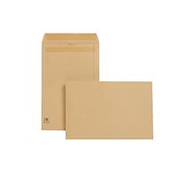 N/Gdn Man S/Seal 381x254mm Envelope P250