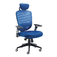 FF Arista Mesh Hb Task Chair H/Rest Blu