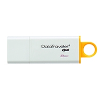 Kingston DataTravler DTIG4 8Gb USB Drive