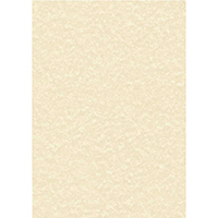 Decadry Parchment Champagne A4 L/heads