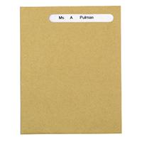 Sage Compat Wage Envelope Pk1000 SE46